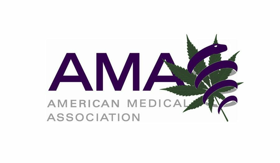 AMA Wants Immunity For Medical Cannabis Recommenders